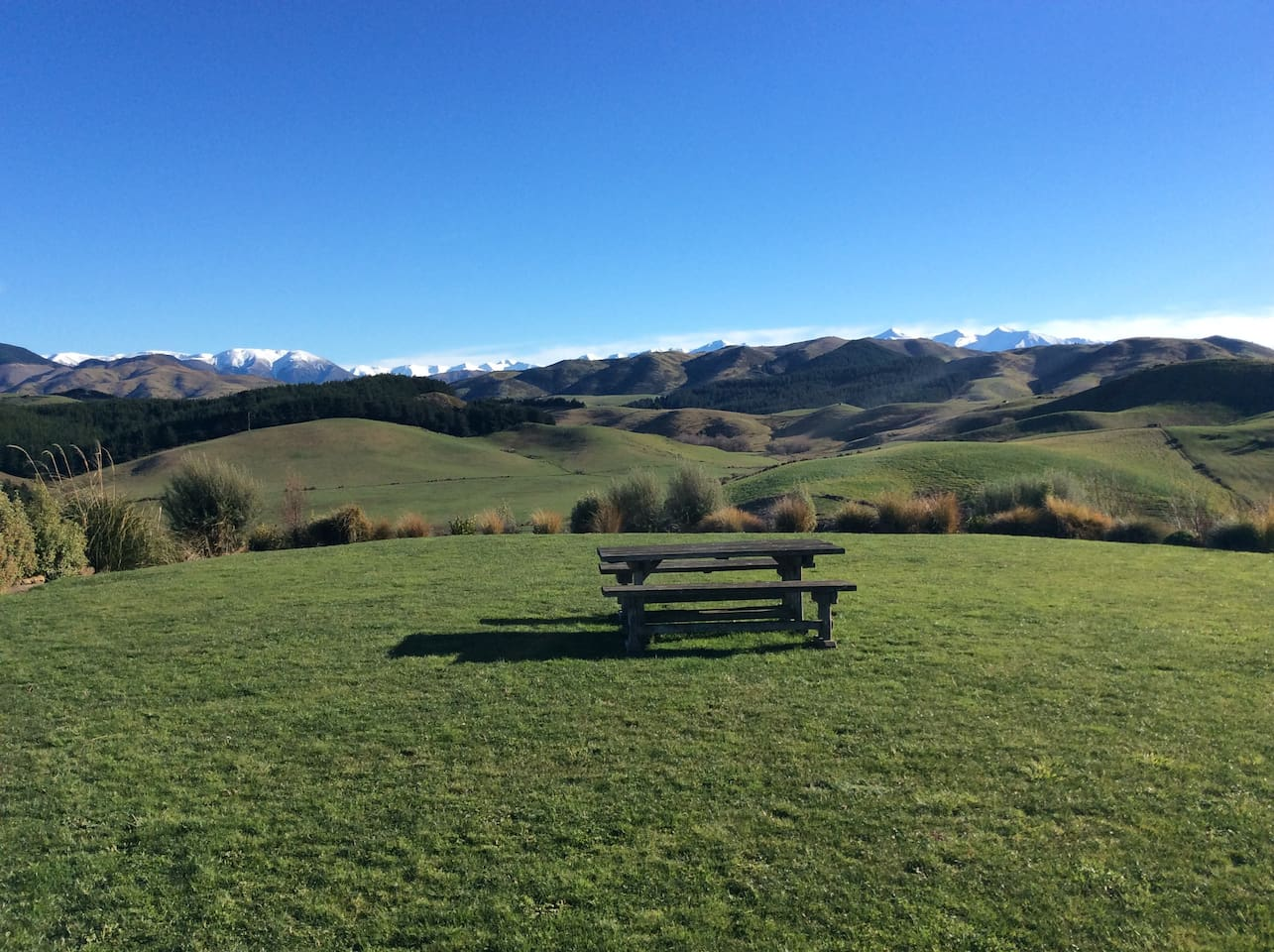 View of Southern Alps from living space