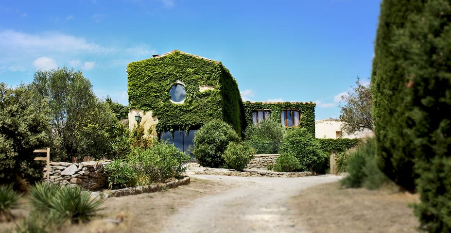 Private family gite at Domaine de Palatz - Laure-Minervois - Stuga