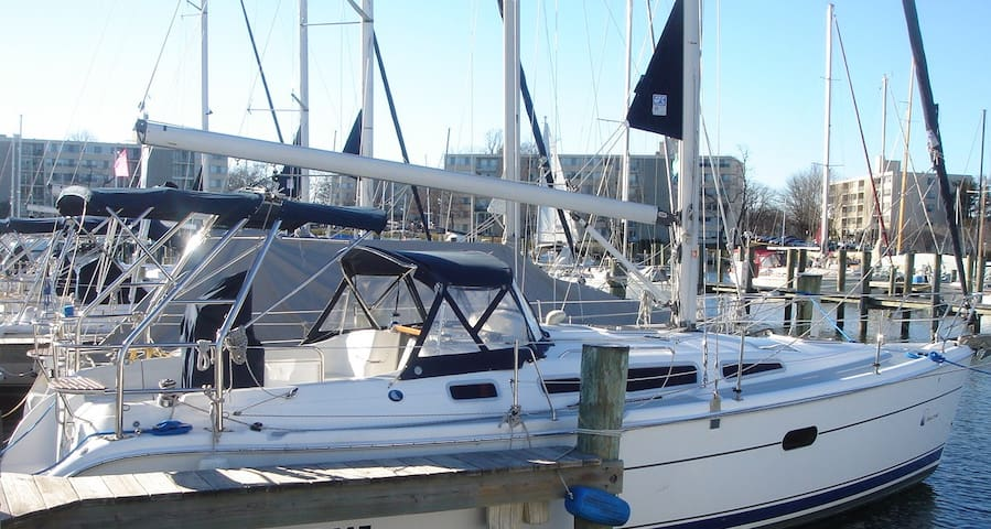 Hunter 36' Sailboat