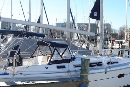 Hunter 36' Sailboat - Annapolis - Tekne