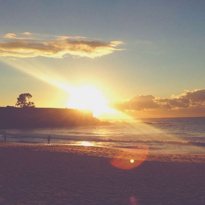 Coogee Beach (My own photos)