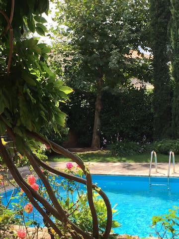 Υπέροχος κήπος μεσα σε αυτονομία - Άγιος Στεφανος - Dom