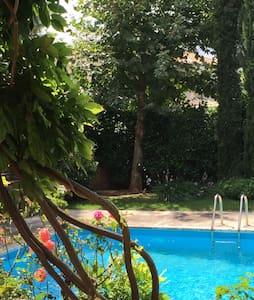 Υπέροχος κήπος μεσα σε αυτονομία - Άγιος Στεφανος