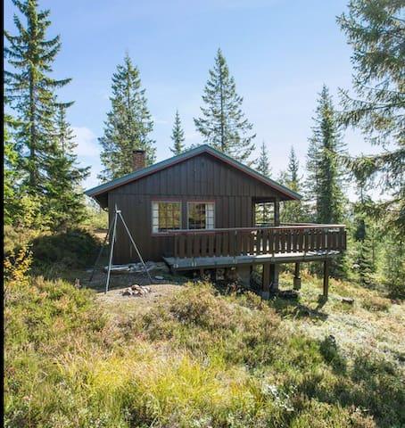 Koselig hytte på Blefjell (ca 1 km fra Blestølen)