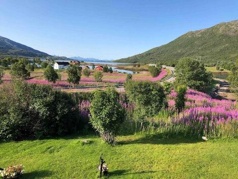 Stor oplevelsesbase for Lofoten og Vesterålen