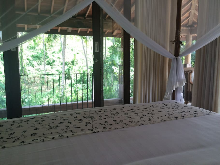 view from the bed looking out to the jungle and river