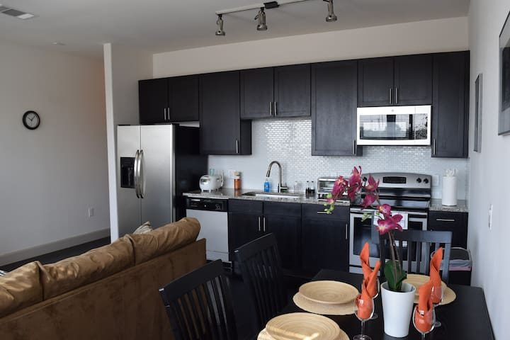 Luxury Mid - Rise Apartment in Montrose Area