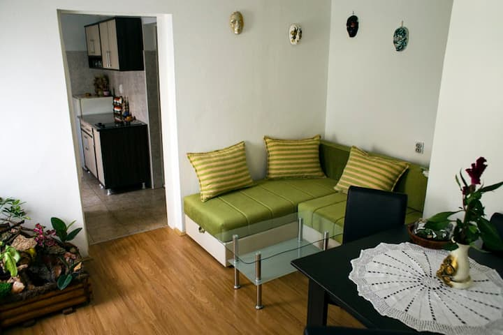 Green apartman Novi Sad