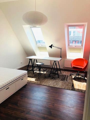 Cozy, comfy room in beautiful apartment