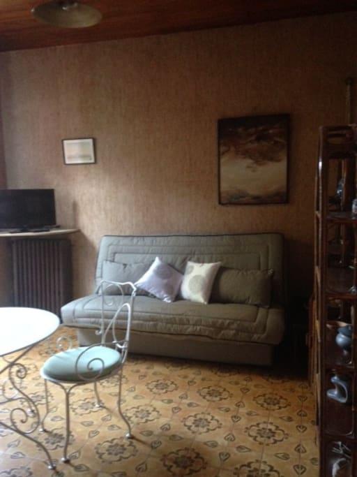 Pièce à vivre, avec canapé-lit très confortable