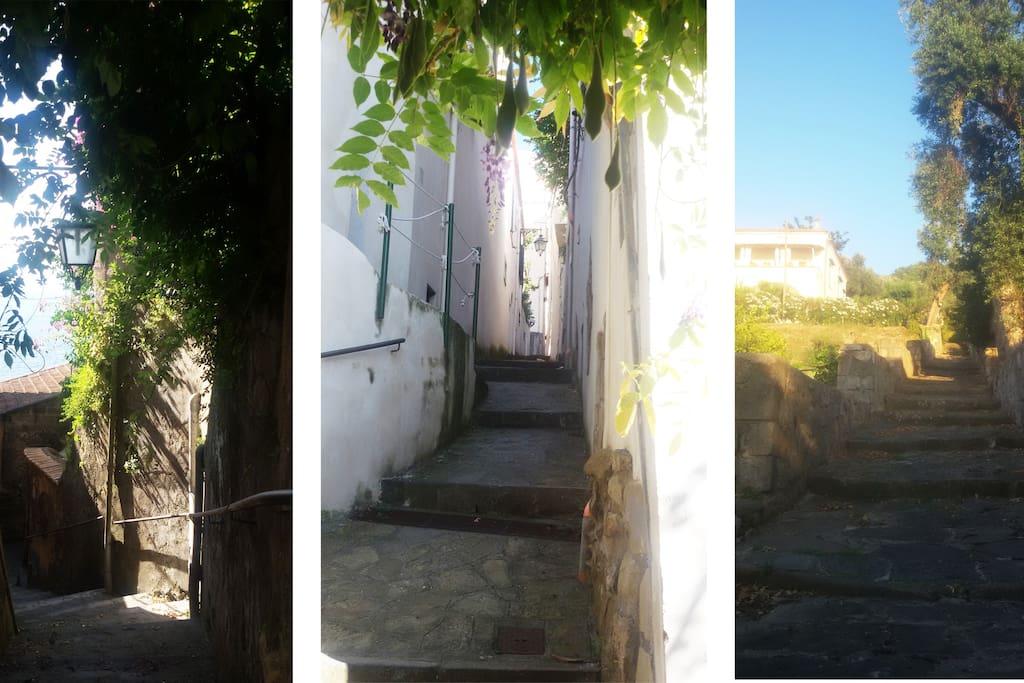 the marciano village