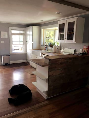 Dog-friendly 2.5 bedroom with fenced in yard!