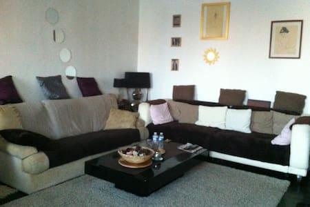 appartement 3 pieces avec balcon - Maisons-Alfort