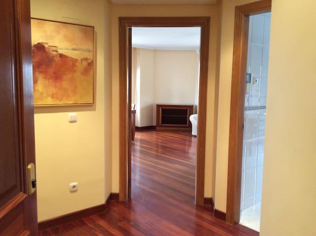 Piso en Oviedo-Vistas monte Naranco - Oviedo - Wohnung