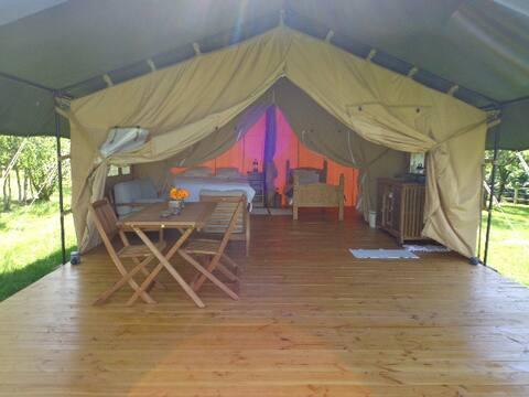 Safari Lodge tente