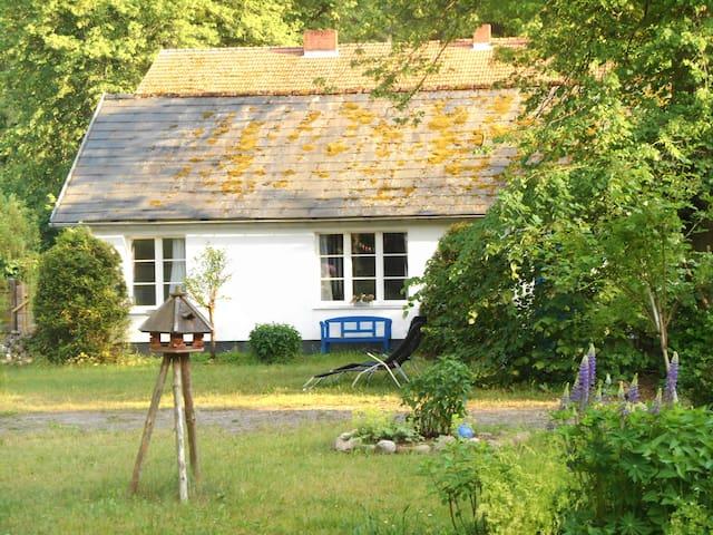 Stechlinsee idyllisches Cottage im Wald 1