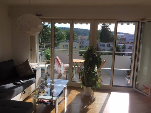 Lovely private apartment near Zurich City Center