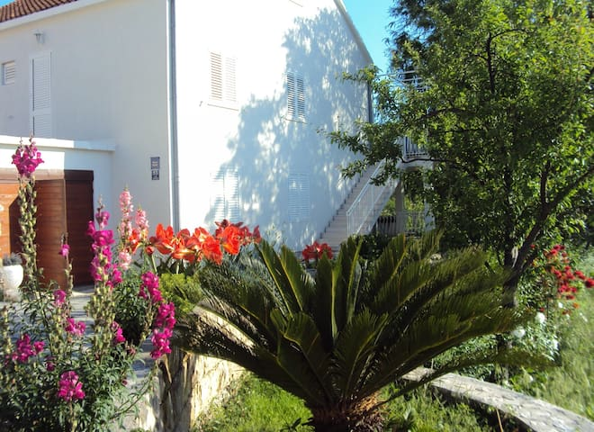 Apartment Garden - Kupari - Lejlighed