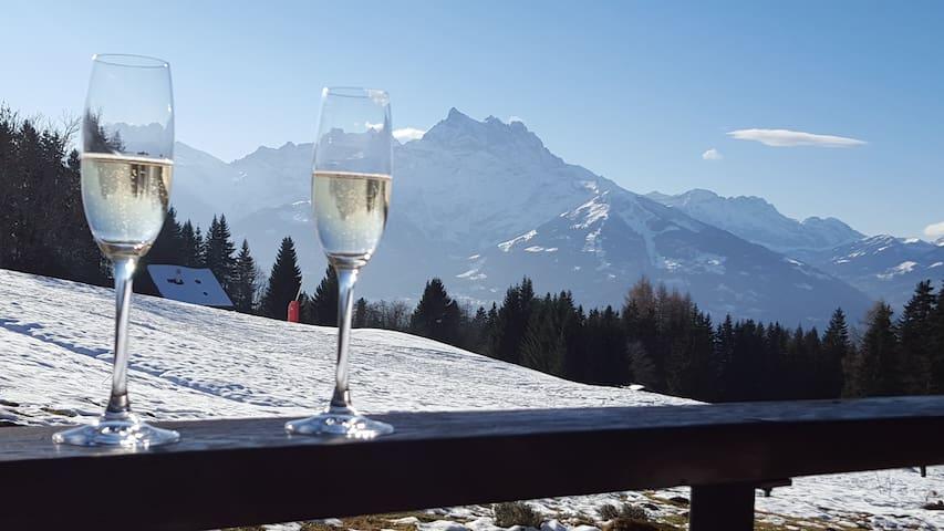 Marignac Ski in, ski out - Villars-sur-Ollon - Lejlighed