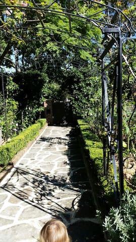 Serene Garden Apartment - Turramurra - Casa