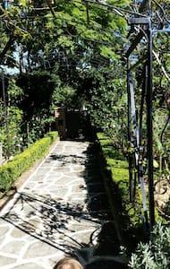 Serene Garden Apartment - Hus