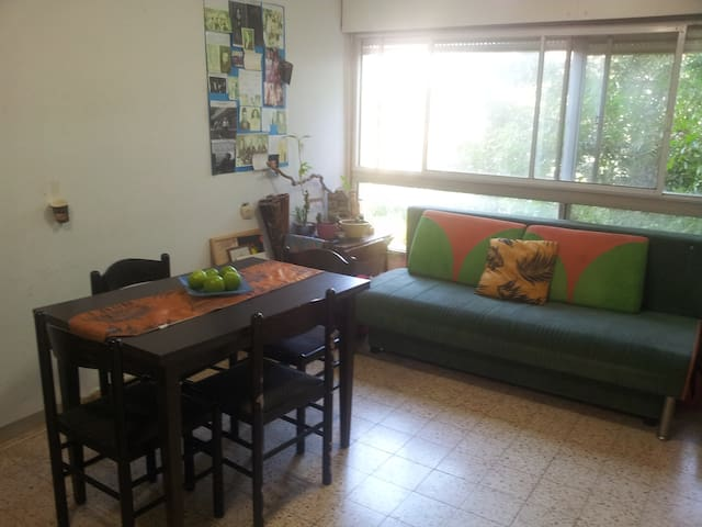 Karmiel flat or one room only - Karmiel - Apartamento