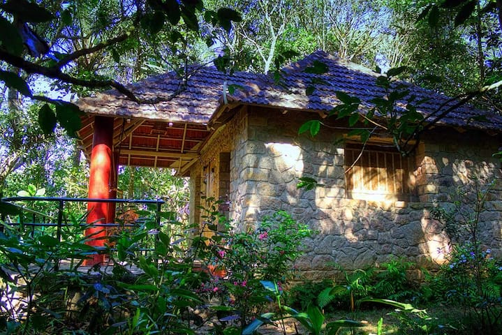 Eco cottage in Thekkady