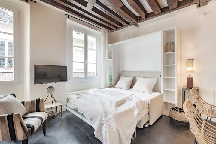 Beautiful apartment located at Montorgueil/Marais