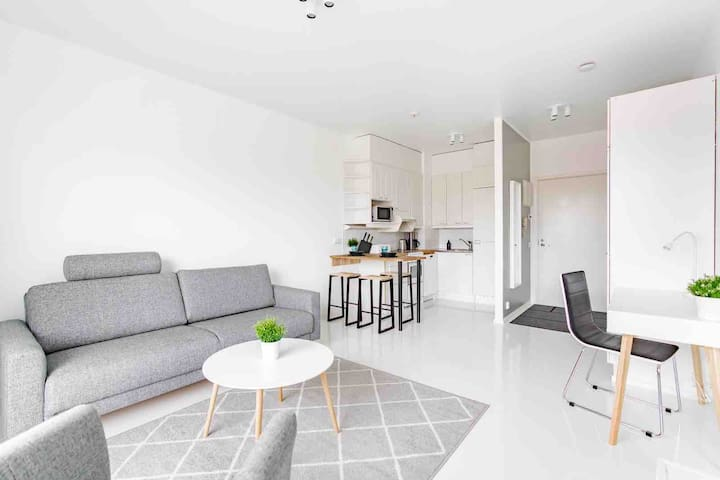 Livingroom with pull-out couch (also spare bed available)