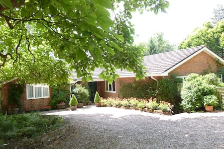 Friendly B and B in Nether Wallop, Hampshire - Hampshire - Bed & Breakfast