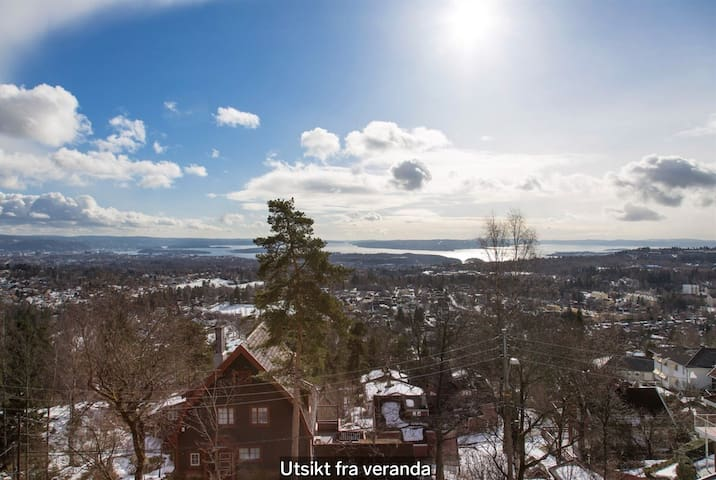 Magnificent views of Oslo city
