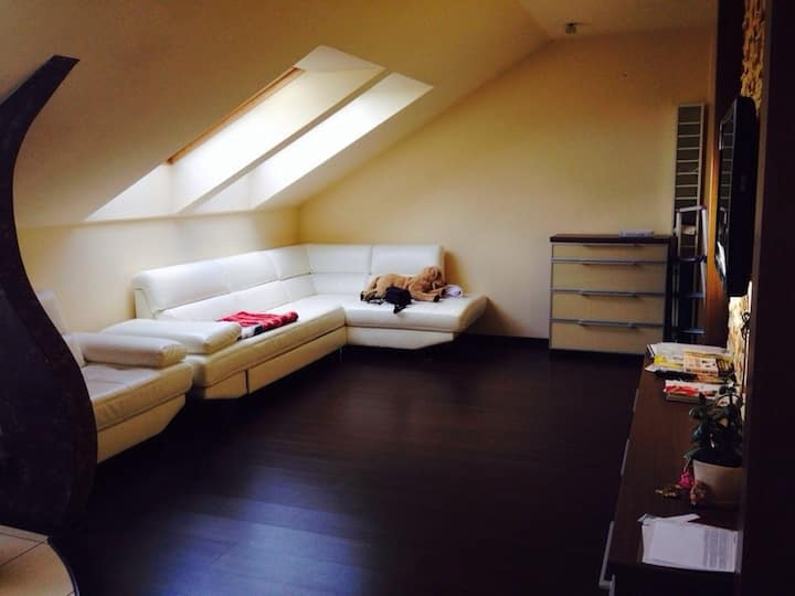 Clean and cozy loft!