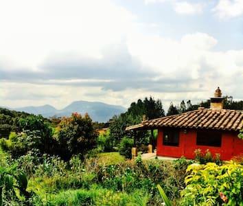 Flower Paradise - Santa Elena