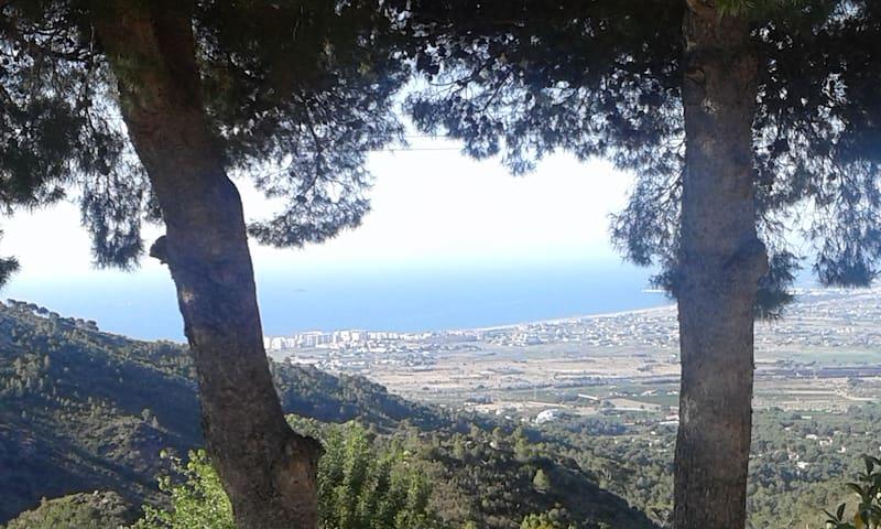 PALMERA - Benicàssim - Flat