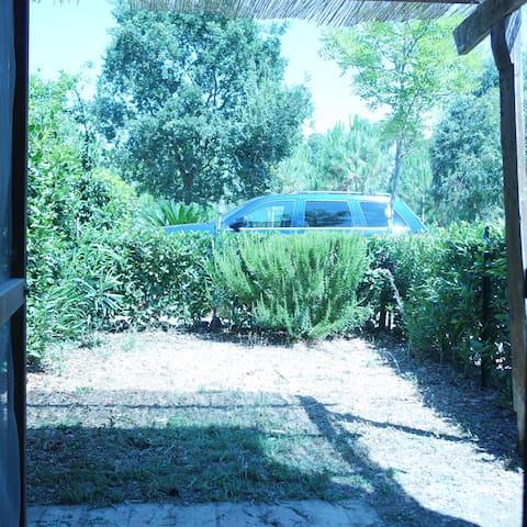 Life in the countryside 21 - Marina di Grosseto - Apartamento