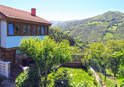 Perfect house. Garden with BBQ on the Mountain