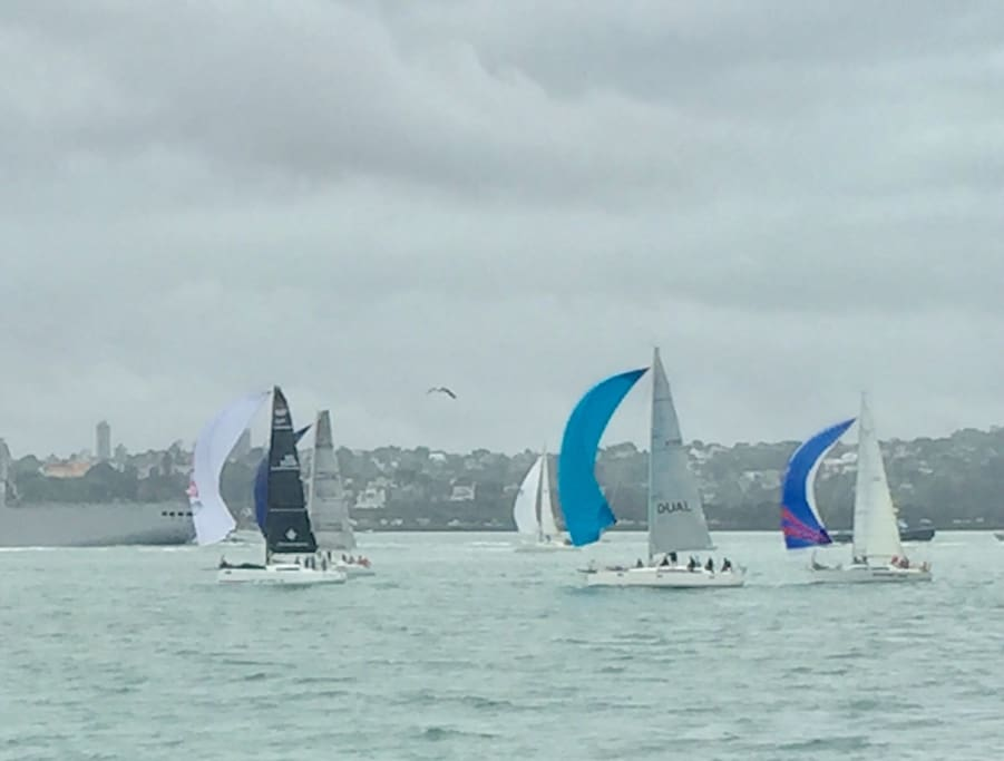 View of Yacht Racing in the harbour from Devonport