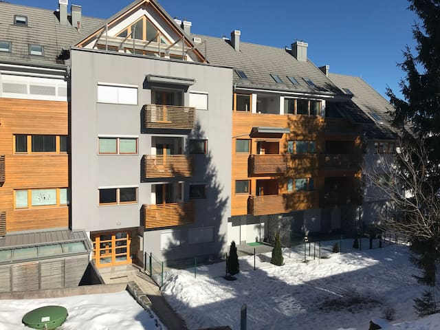 Charming flat close to ski resort!! - Kranjska Gora - Apartment