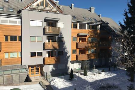 Charming flat close to ski resort!! - 克拉尼斯卡戈拉(Kranjska Gora)