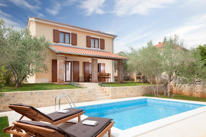 Charming villa Rustica with a pool - Sužan - วิลล่า