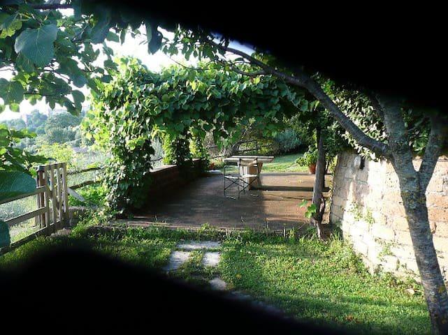 Maremma hills (Tuscany) - Manciano - Hus
