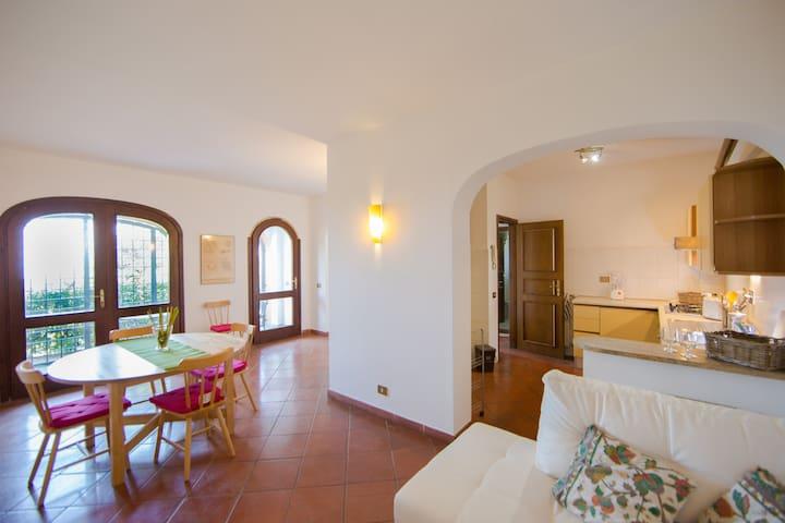 Country Villa Vineyard free wifi n4 - Grottaferrata - Villa