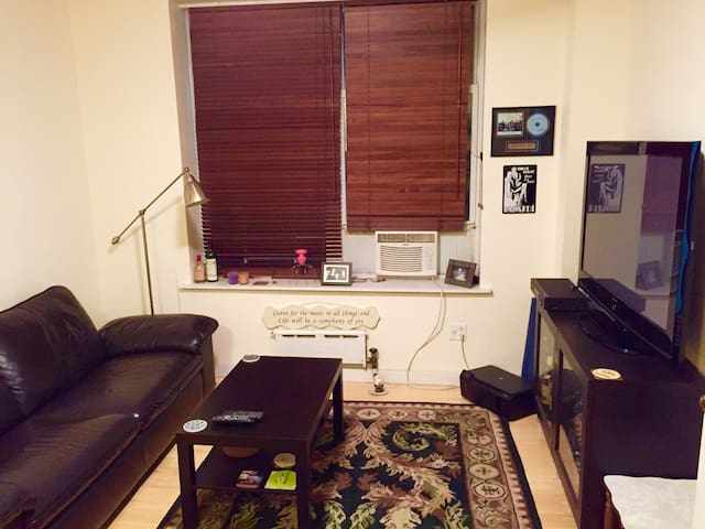 Spacious Manhattan One Bedroom Apt - New York - Byt