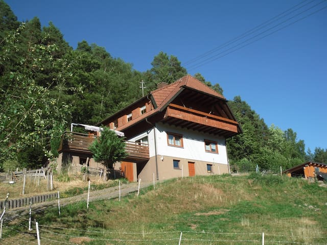 Couch in the Black Forest - Schramberg - Apartament
