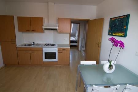 Kamnik Alps Apartment - Kamnik - Departamento