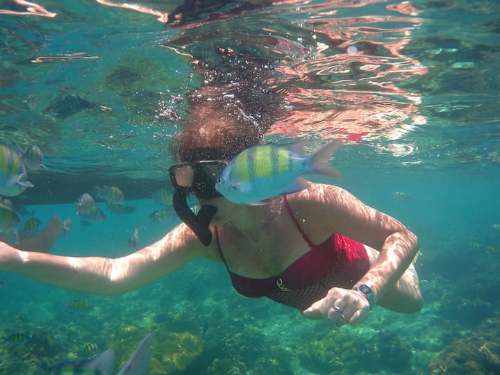 Use our snorkelling equipment!