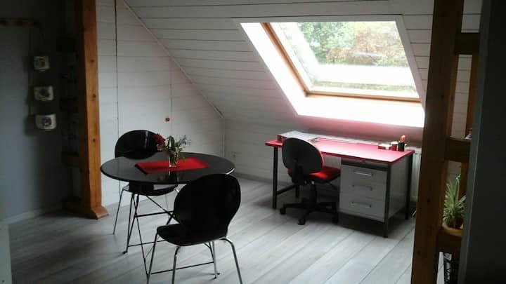 Studio en lisière de forêt à  10 min de Sarralbe