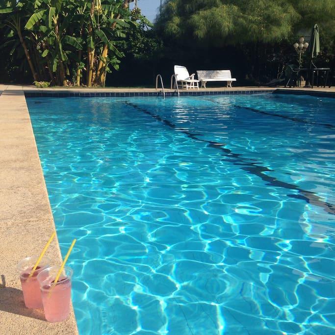 large pool, 25 m