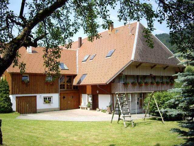 Moderne Ferienwohnung mit 90 m² - Münstertal/Schwarzwald - Hus