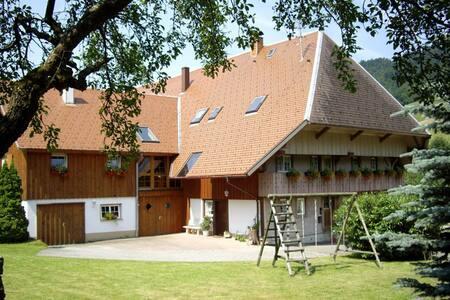 Moderne Ferienwohnung mit 90 m² - Münstertal/Schwarzwald
